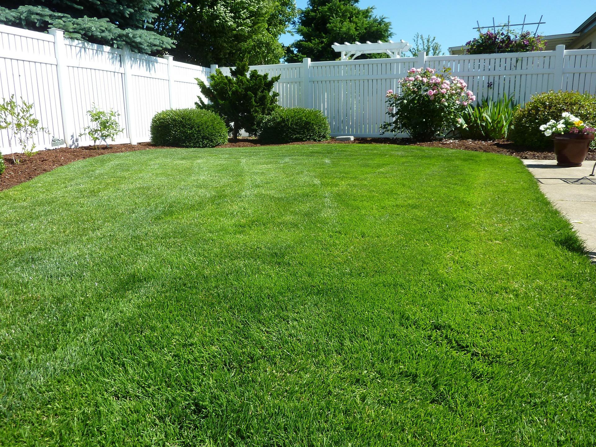 backyard250890_1920